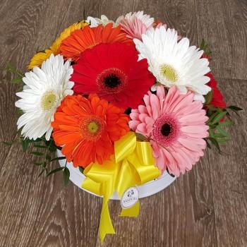 Kvetinový box AnaFiori 11